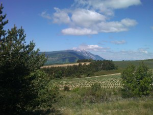Mont Ventoux from the East side